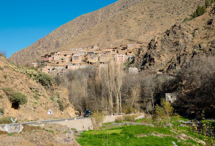 Berberowie i Atlas Wysoki (10)